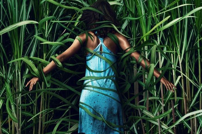 【電影|觀後感】《高草魅聲In the Tall Grass》:考驗邏輯能力的驚悚片